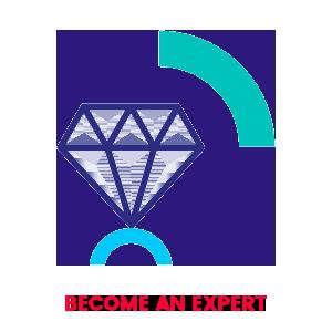 EXPERT_VISUAL.png